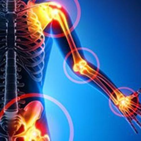 Immagine per la categoria Sistema Muscolo-Scheletrico
