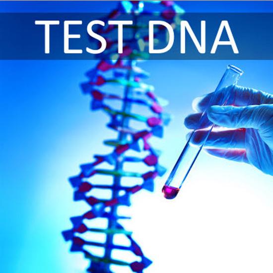Test DNA - meglio sapere le predisposizioni